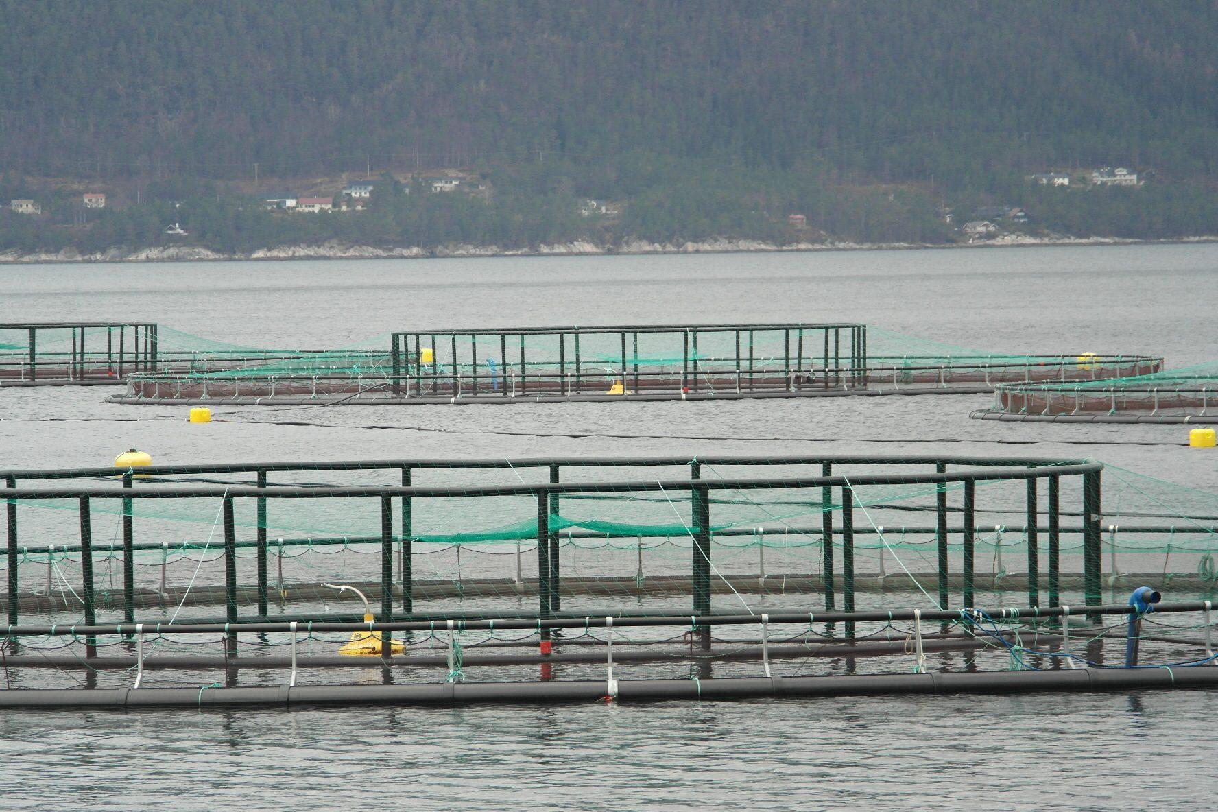 Luftambulanse sendt til ulykke på Frøya - …